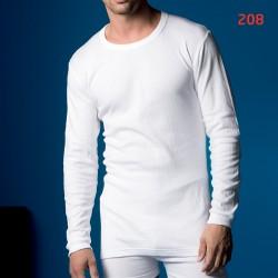 ABANDERADO 208